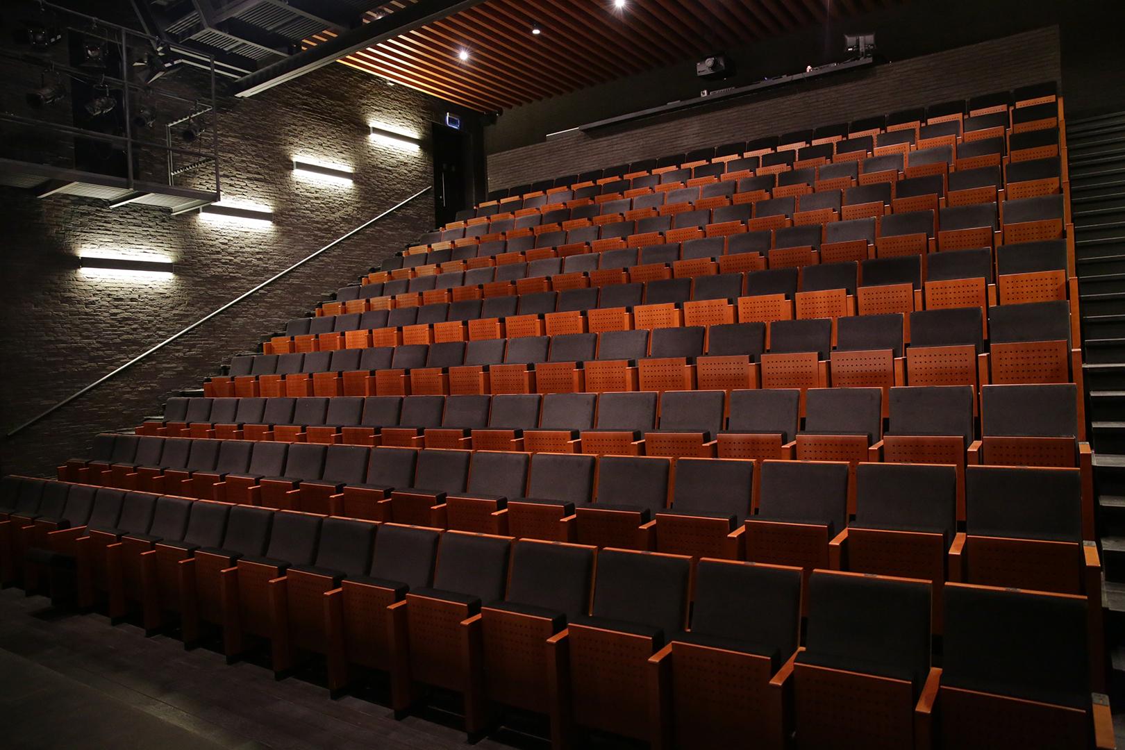 Камерный театр воронеж афиша купить билеты в краснодарский цирк